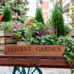 Neighbourhood Guide: Covent Garden