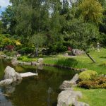 Exploring Kyoto Garden in Holland Park