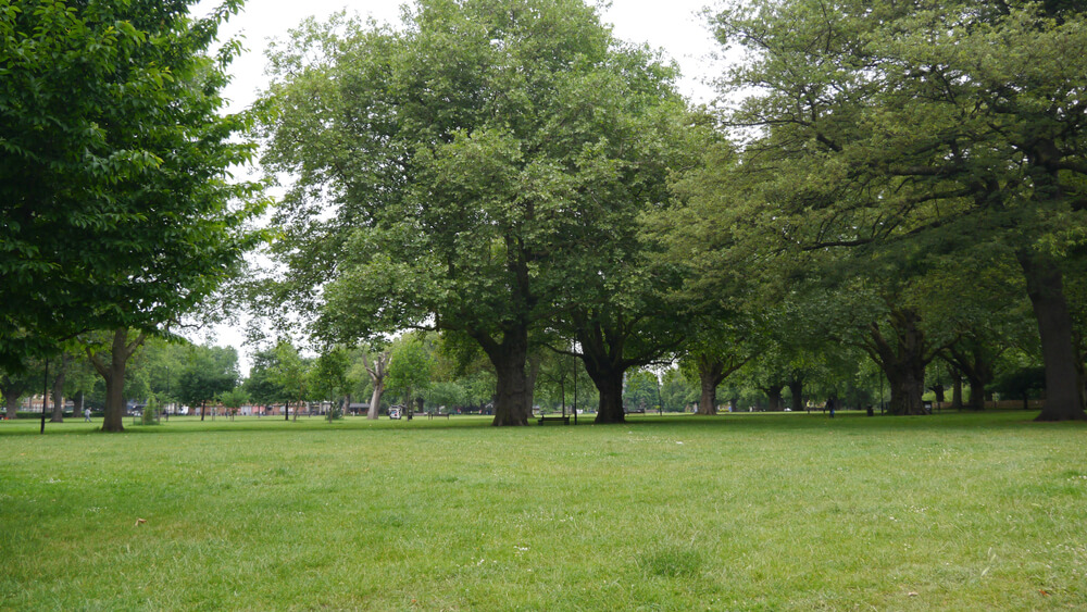 London Fields Lawns and Trees